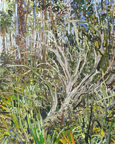 Lilian Garcia-Roig, 'Juniper and Palms', 2009