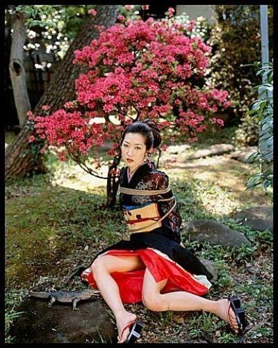 Nobuyoshi Araki, 'Flower, Yamorinski and Bondage', 2006