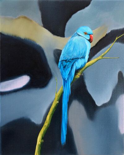 Romain Bernini, 'Untitled (bird 14)', 2016
