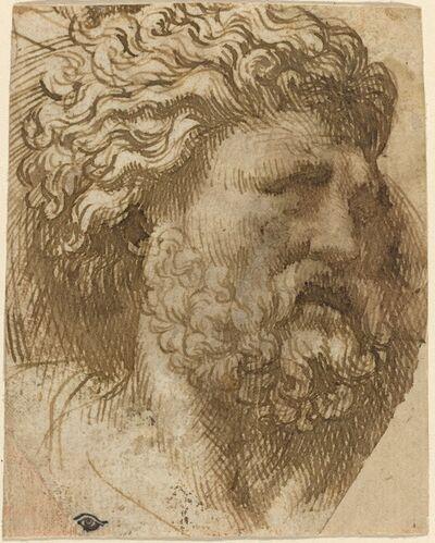 Domenico Campagnola, 'Head of a Man'