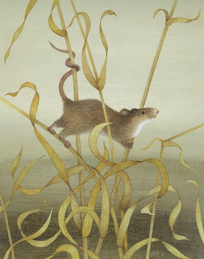 Harriet Bane, 'Harvest Mouse'
