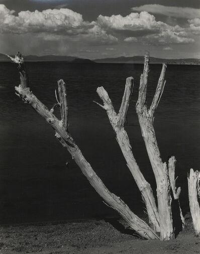 Edward Weston, 'Mono Lake [California]', 1937