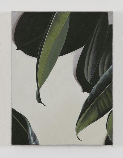 Oliver Osborne, 'Rubber Plant', 2016