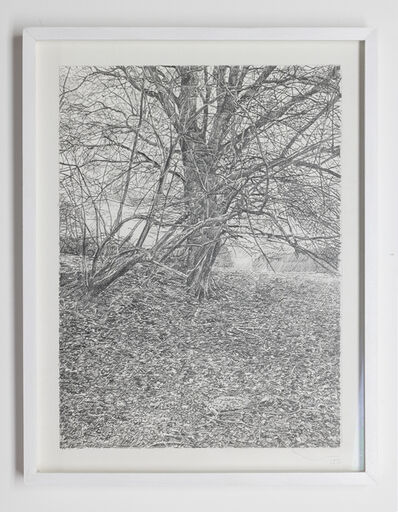 Stijn Cole, 'One step / two steps: series of 3 drawings', 2013