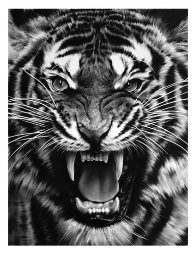 Robert Longo, 'Untitled (Roaring Tiger)', 2015