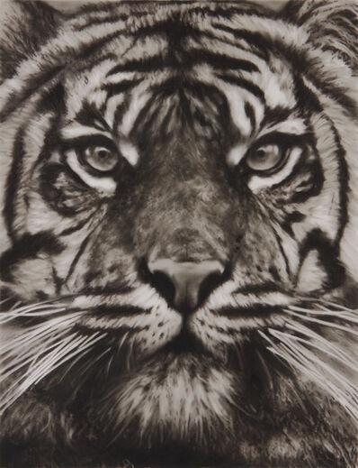 Robert Longo, 'Study of Tiger Head 18', 2013
