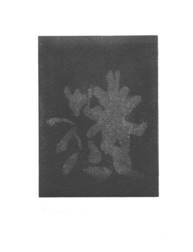 Krisna Schumann, 'Stone Flower (5)', 2018