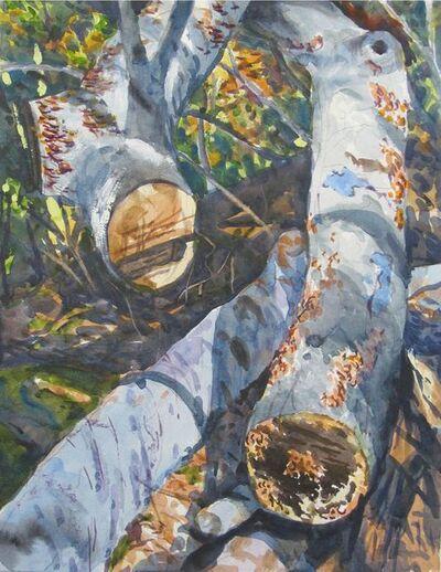 Richard Estell, 'Sawn Trunks', 2015