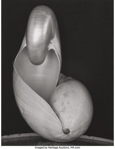 Edward Weston, 'Shell', 1927-printed circa 1970s