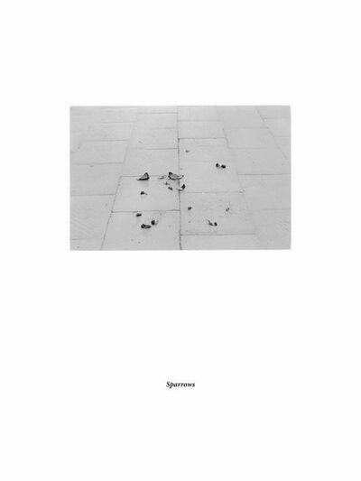 Arnas Anskaitis, 'Sparrows', 2013