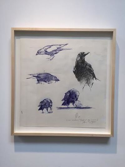 John Brosio, 'Crows Study for State of the Union', 2016