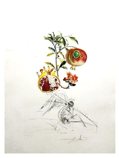 "Salvador Dalí, 'Original Lithograph ""Flordali - Angel and Pomegranate"" by Salvador Dali', 1969"