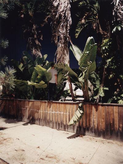 Sebastian Stumpf, 'Fences #08', 2017