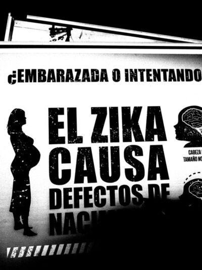 Melvin Grave Guzman, 'Zika', 2017