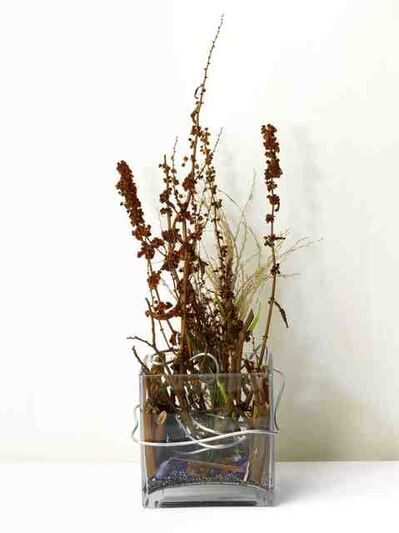 Yahui Wang, 'A work for a building plot: Make a flower arrangement for me ', 2011