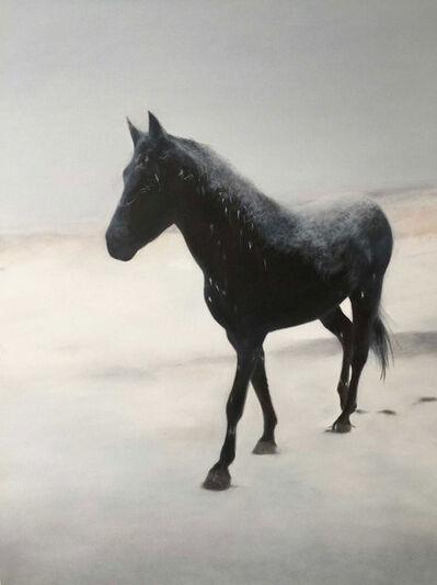 Deborah Martin, 'Snow', 2017