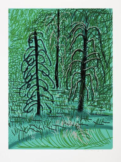 David Hockney, 'The Yosemite Suite No. 16', 2010