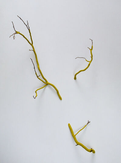 Esther Traugot, 'Branch 3', 2017