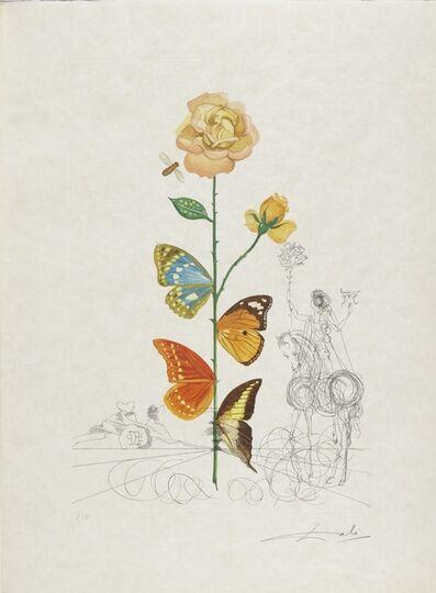 Salvador Dalí, 'Flora Dalinae (Michler & Löpsinger 227-236; Field 68-3 A-J)', 1968