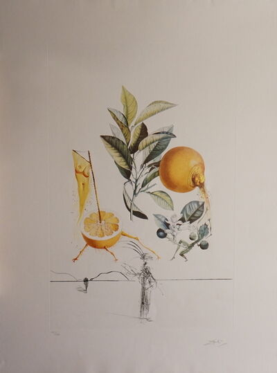Salvador Dalí, 'FLorDali/Les Fruits Grapefruit', 1969