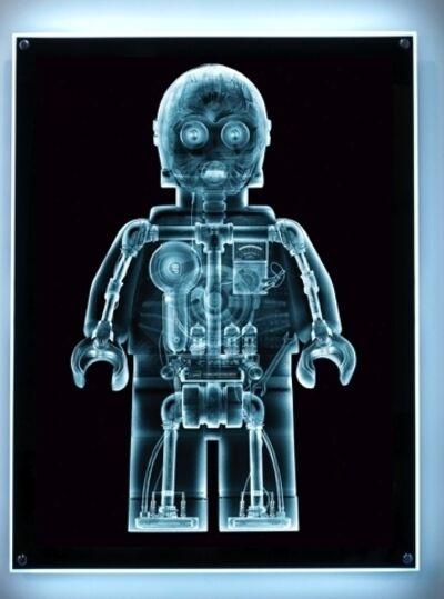 Dale May, 'X-Ray CthruPO Lightbox'