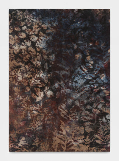 Sam Falls, 'Untitled (Bovina, N.Y., marsh 2)', 2017