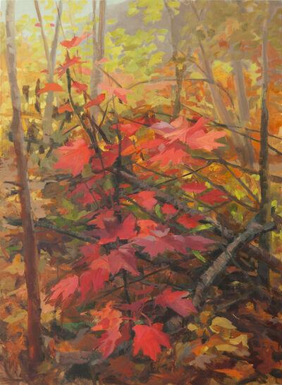 Kristin Musgnug, 'Red Maple', 2014