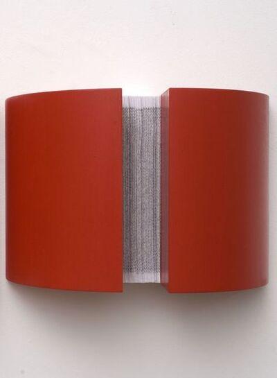 Cécile Andrieu, 'INVERSUM-IN', 2010