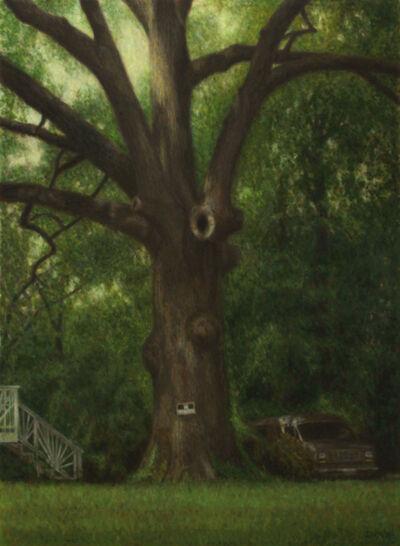 Davis Morton, 'No Trespassing '