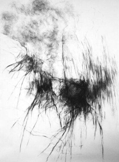 Rebecca Schultz, 'Sequencing', 2016