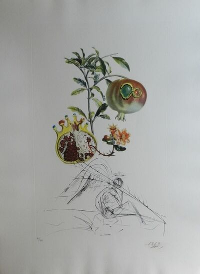 Salvador Dalí, 'FlorDali/Les Fruits Pomegranate', 1969