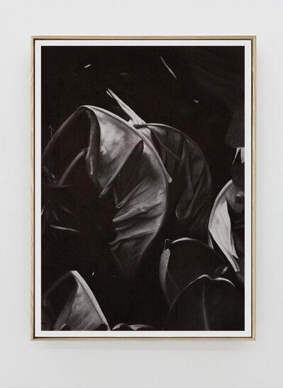 Romain Cadilhon, 'Leaves No.4'