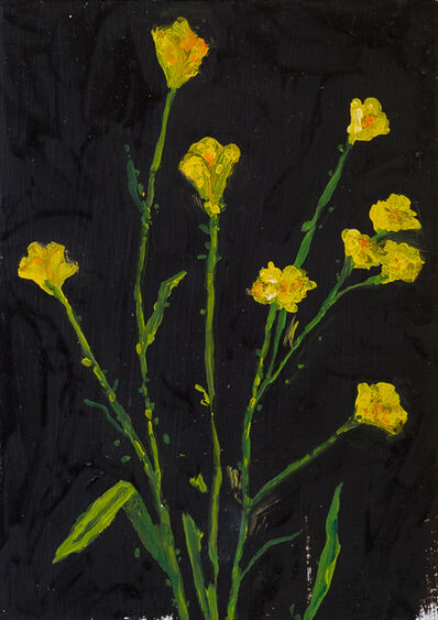 Sarah Osborne, 'Buttercups at Night', 2017
