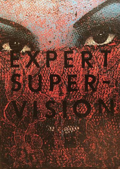 """Ales """"BASK"""" Hostomsky, 'Expert Super Vision', 2018"""