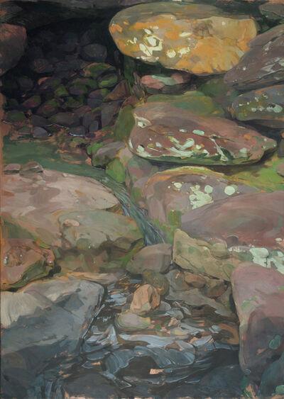 Benjamin J. Shamback, 'A Trickle of Waterfall at Bellingrath Gardens', 2018