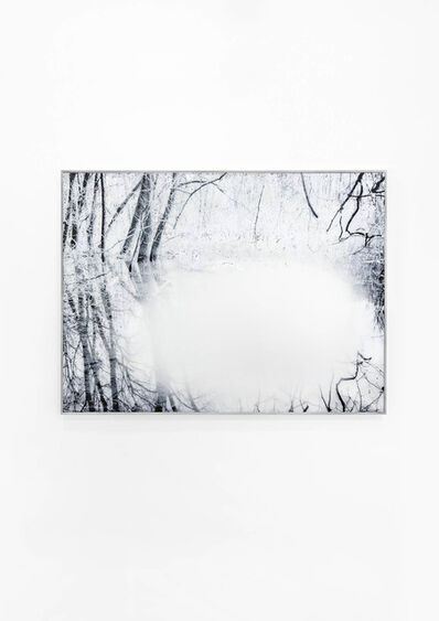 Mariella Bettineschi, 'L'Era Successiva-Natura', 2012
