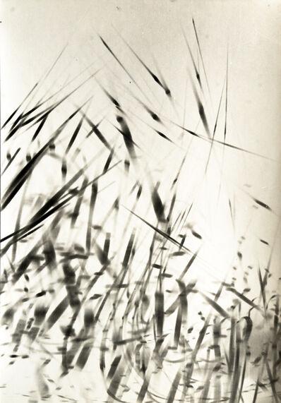 Etienne Bertrand Weill, 'Comme des roseaux', 1965