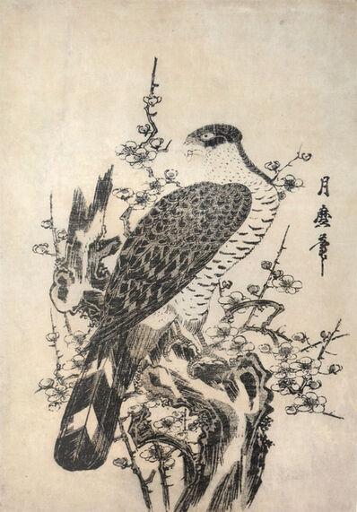 Tsukimaro, 'Hawk and Blossoming Plum Tree', ca. 1806