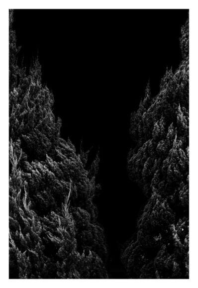 Thomas Maisonnasse, 'Tout ce qui se voit sous le soleil (Takamatsu 1)', 2016