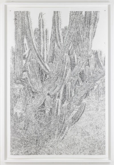 Stijn Cole, '1:1 Oaxaca II', 2018