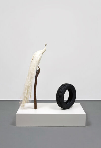 Sylvie Fleury, 'Color Lab - Free study with white peacock', 2012
