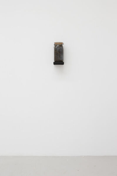 "Kate Ericson and Mel Ziegler, '""Vinegar of the 48 Weeds"" ', 1992"