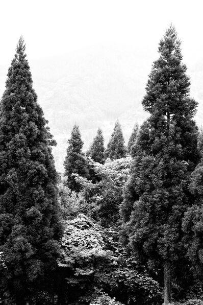 Thomas Maisonnasse, 'Tout ce qui se voit sous le soleil (Hoshinomura 3)', 2016