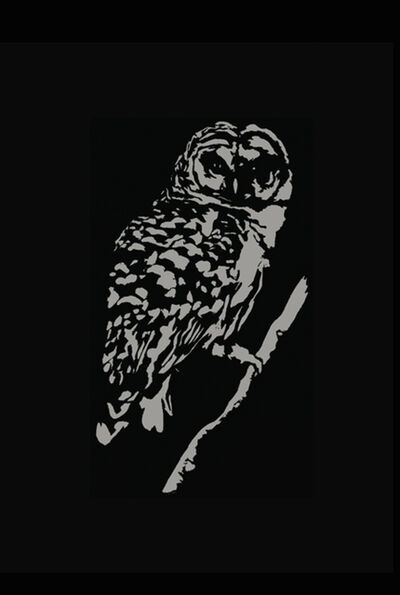 Thomas Watkiss, 'The Owl', 2013
