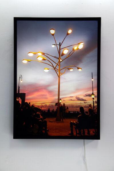 Rafael Villares, 'The tree of life ', 2012