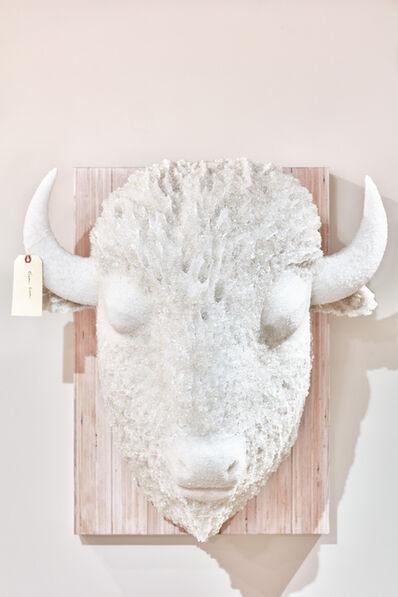 Joseph Rossano, 'Buffalo #2', 2017