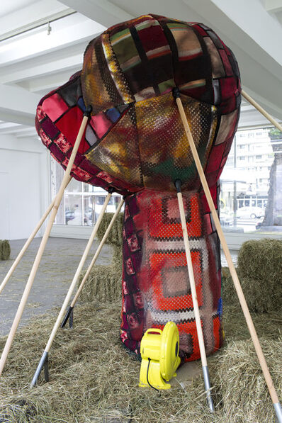 Andra Ursuta, 'Installation view of Soft Power'