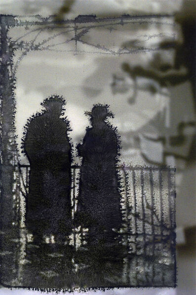 Fred Cray, 'Double Printed Silhouettes ', 2016