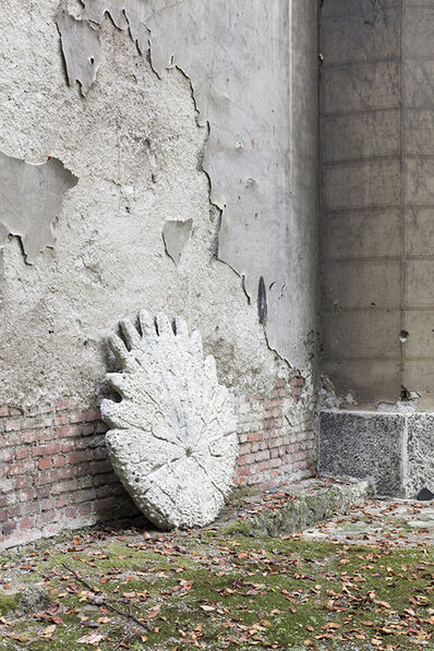 Federico Tosi, 'Baby (fossil)', 2017