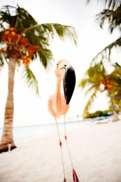 Shannon Greer, 'Franky the Flamingo', 2000-2018